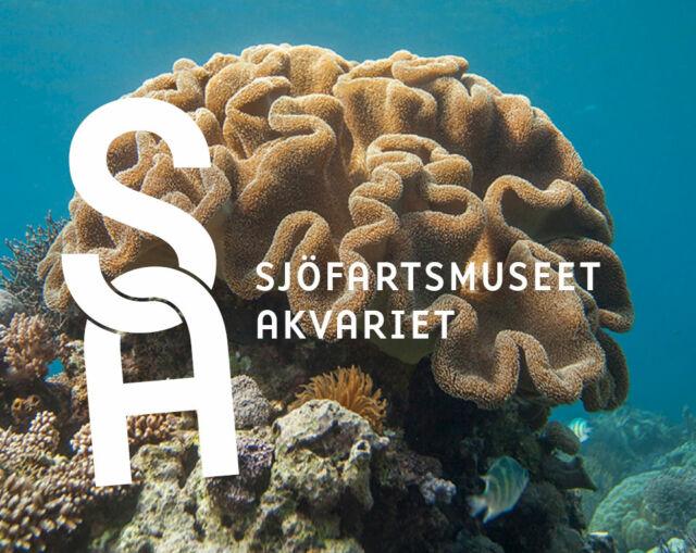 Nyhet - Total make over på Sjöfartsmuseet Akvariet