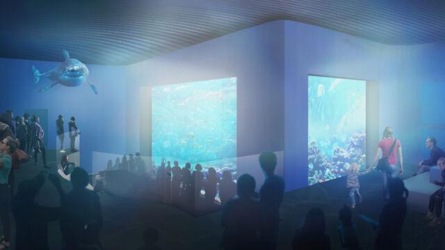 Samtal om nya Akvariet